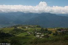 Daylily, East Coast, Residence, Taiwan