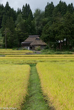 Chubu, Japan, Paddy, Residence, Thatch