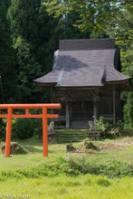 Chubu, Japan, Roof, Shrine, Torii Gate