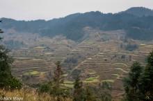 China,Guizhou