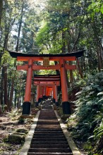 Gate,Japan,Kinki,Shrine,Stairway