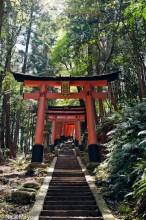 Torii Staircase On Inari-san