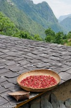Chillies On A Slate Roof In Nujiang