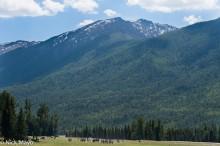 China,Horse,Racing,Tuva,Xinjiang