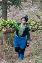 Woman Carrying Home Vegetables