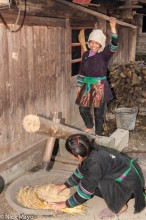 Women Husking Rice