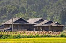 China,Guizhou,Paddy,Residence