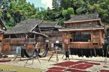 Chilli,China,Cloth Drying,Dong,Drying,Guizhou,Stage,Village