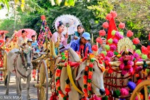 Bullock,Burma,Cart,Sagaing Division,Wedding