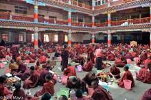 Assembly,China,Monk,Sichuan,Tibetan