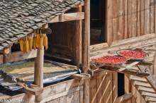 Chilli,China,Corn,Guizhou