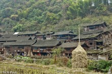 China,Guizhou,Haycock,Village
