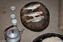 China,Fish,Guizhou,Kettle,Rice Wine,Wedding