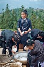 Apron,China,Guizhou,Hair,Hair Pin,Housewarming,Miao,Washing Up