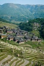 China,Guizhou,Village