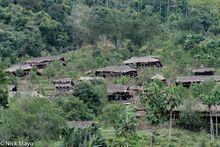 Arunachal Pradesh, India, Thatch, Village