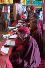In The Drukpa Monastery