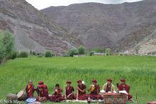 Drum, Horn, India, Jammu & Kashmir, Monk, Religious Ritual