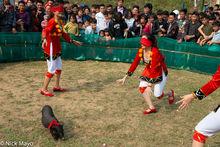 Festival, Game, Lao Cai, Pig, Vietnam