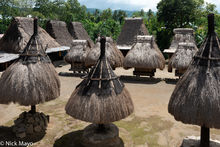 Animist Shrine, Flores, Indonesia, Thatch, Village