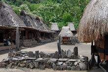 Animist Altar, Animist Shrine, Flores, Indonesia, Roof, Thatch, Village
