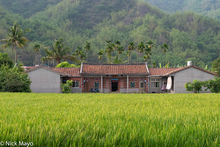 Rice Field & Hakka Farmhouse