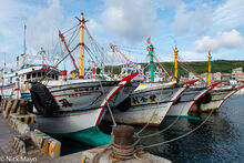 Four Fishing Boats In Port