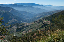 Upper Zhuoshui Valley