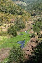 An Idyllic Valley