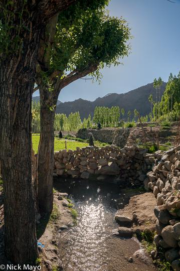 India,Jammu & Kashmir, photo
