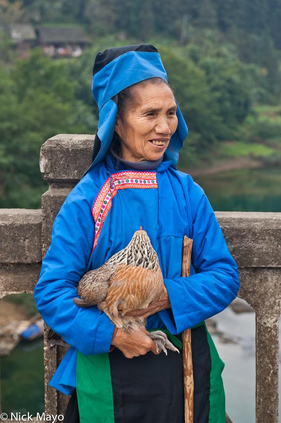 Chicken,China,Guizhou,Hat,Market,Miao, photo