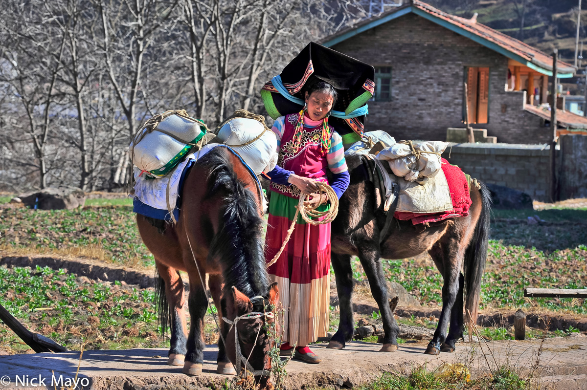 A traditionally dressed Yi woman, wearing a mortar board style hat and hanging beaded earrings, at Hoshi with two packhorses.