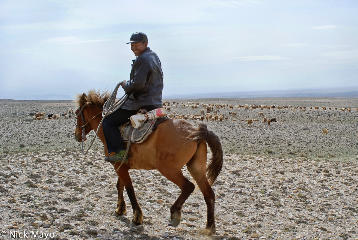China,Herding,Horse,Kazakh,Sheep,Xinjiang, photo