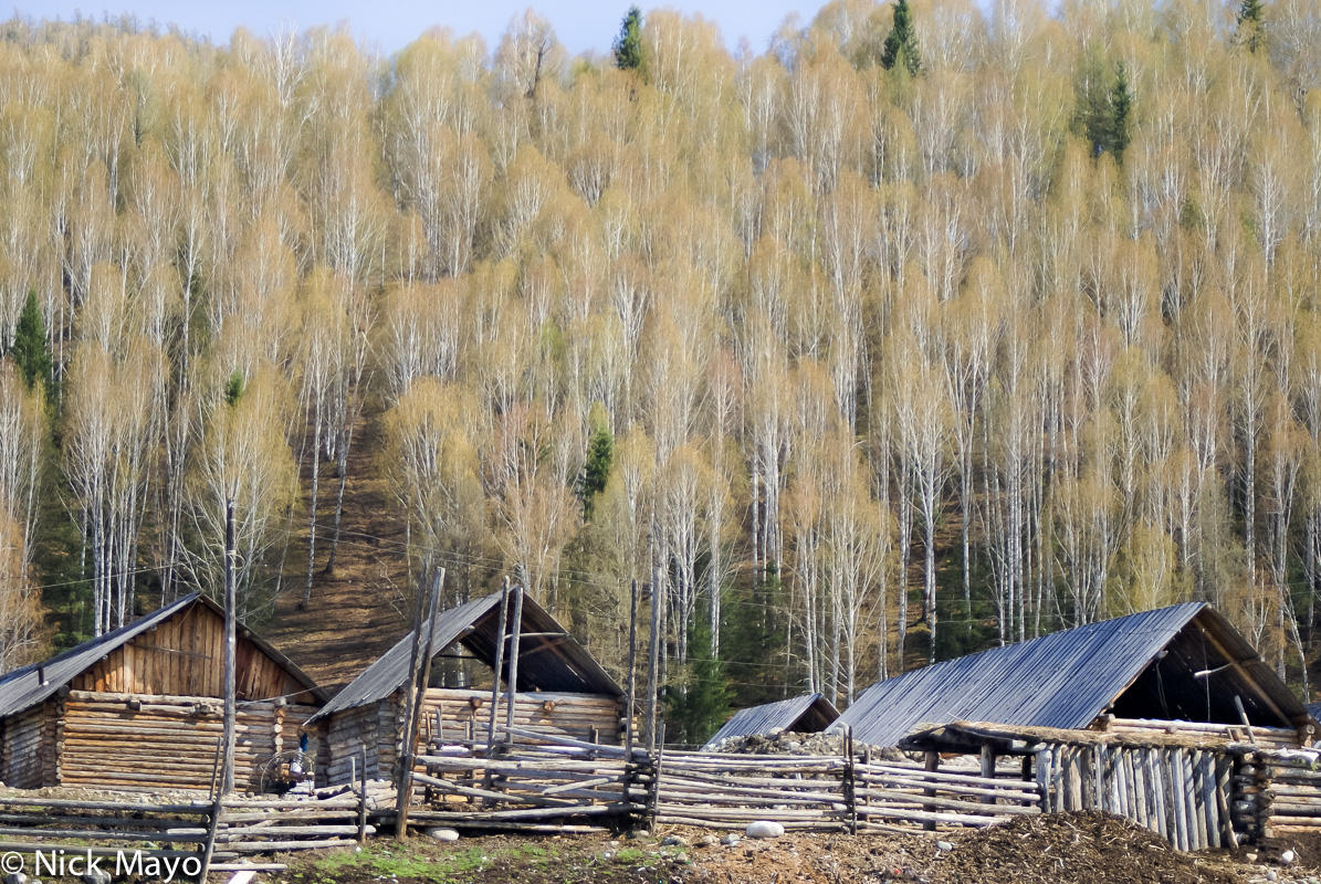 Cabin,China,Xinjiang, photo