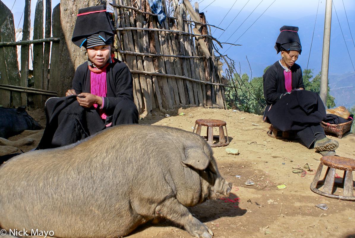 China,Hat,Pig,Sewing,Stitching,Yao,Yunnan, photo