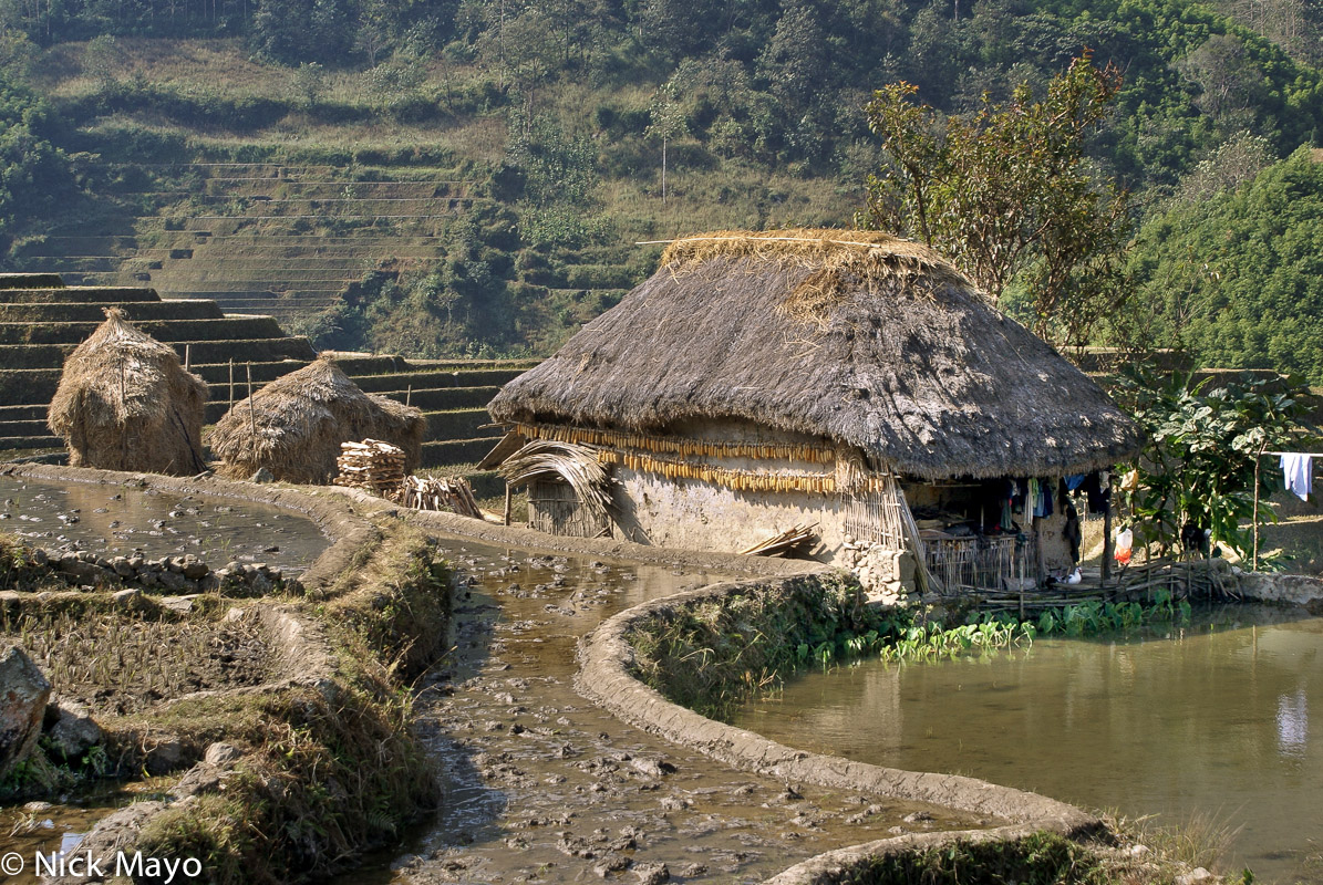 China,Residence,Roof,Thatch,Yunnan, photo
