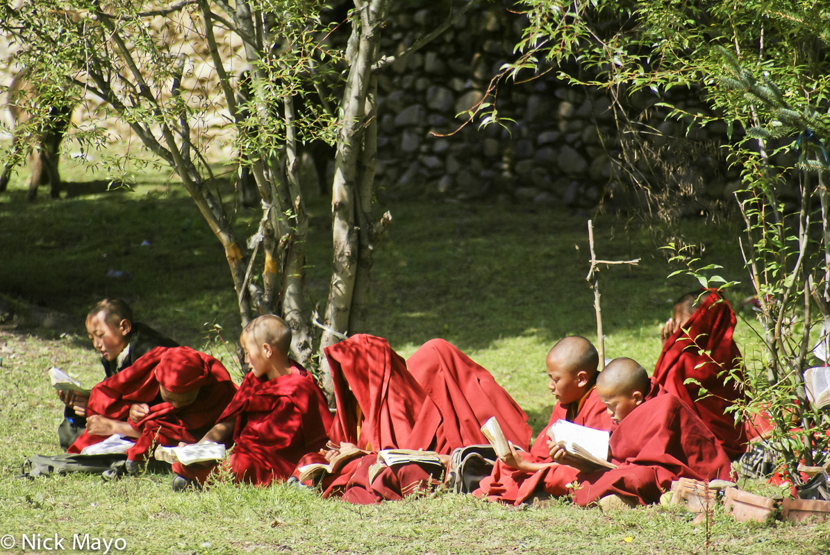 Book,China,Monk,Sichuan,Studying,Tibetan, photo
