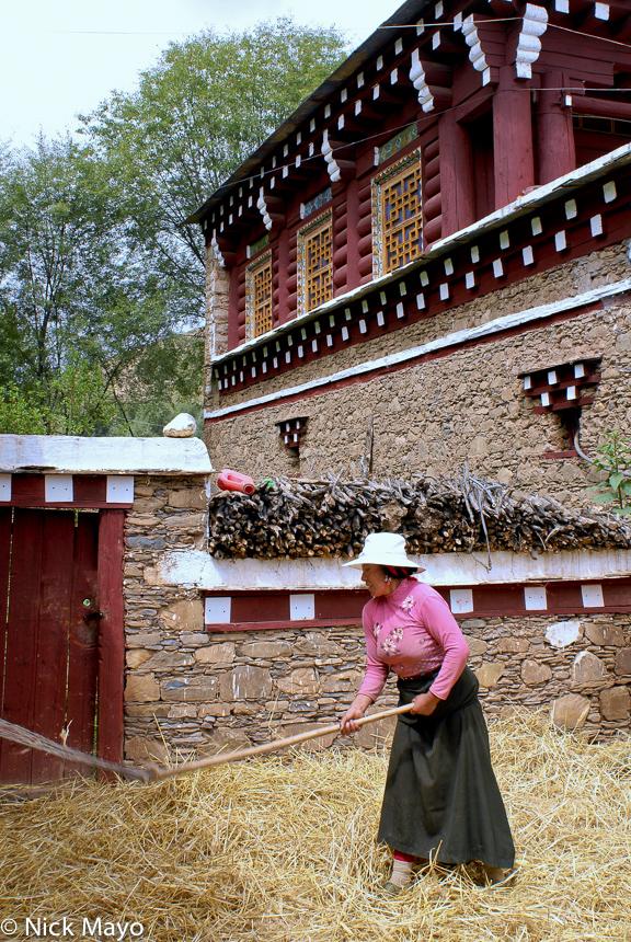 China,Flail,Sichuan,Threshing,Tibetan, photo