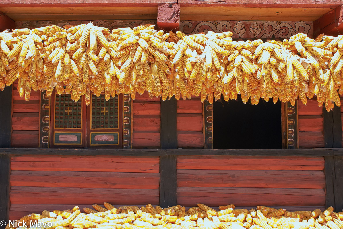 China,Corn,Drying,Residence,Sichuan, photo