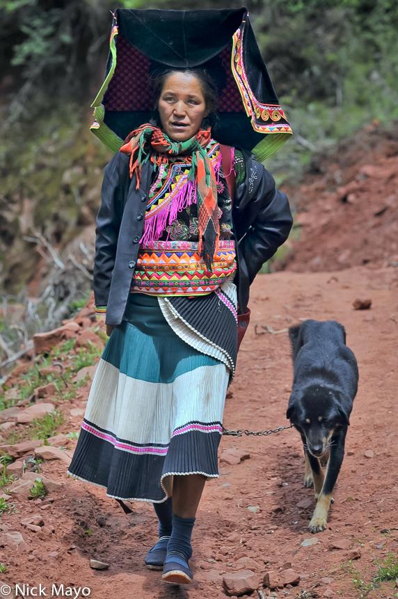 China,Dog,Hat,Yi,Yunnan, photo