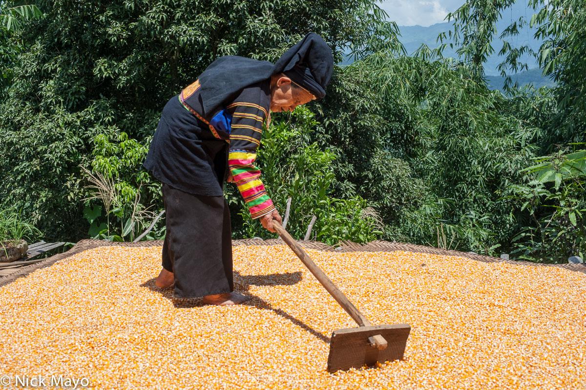 China,Corn,Guangxi,Hat,Raking,Sleeve,Yi, photo