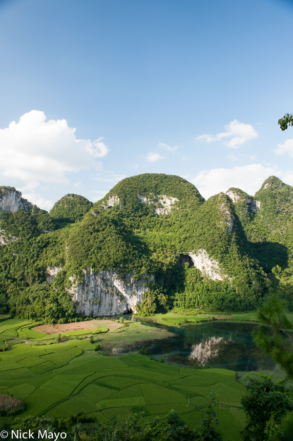 China,Guangxi,Paddy, photo