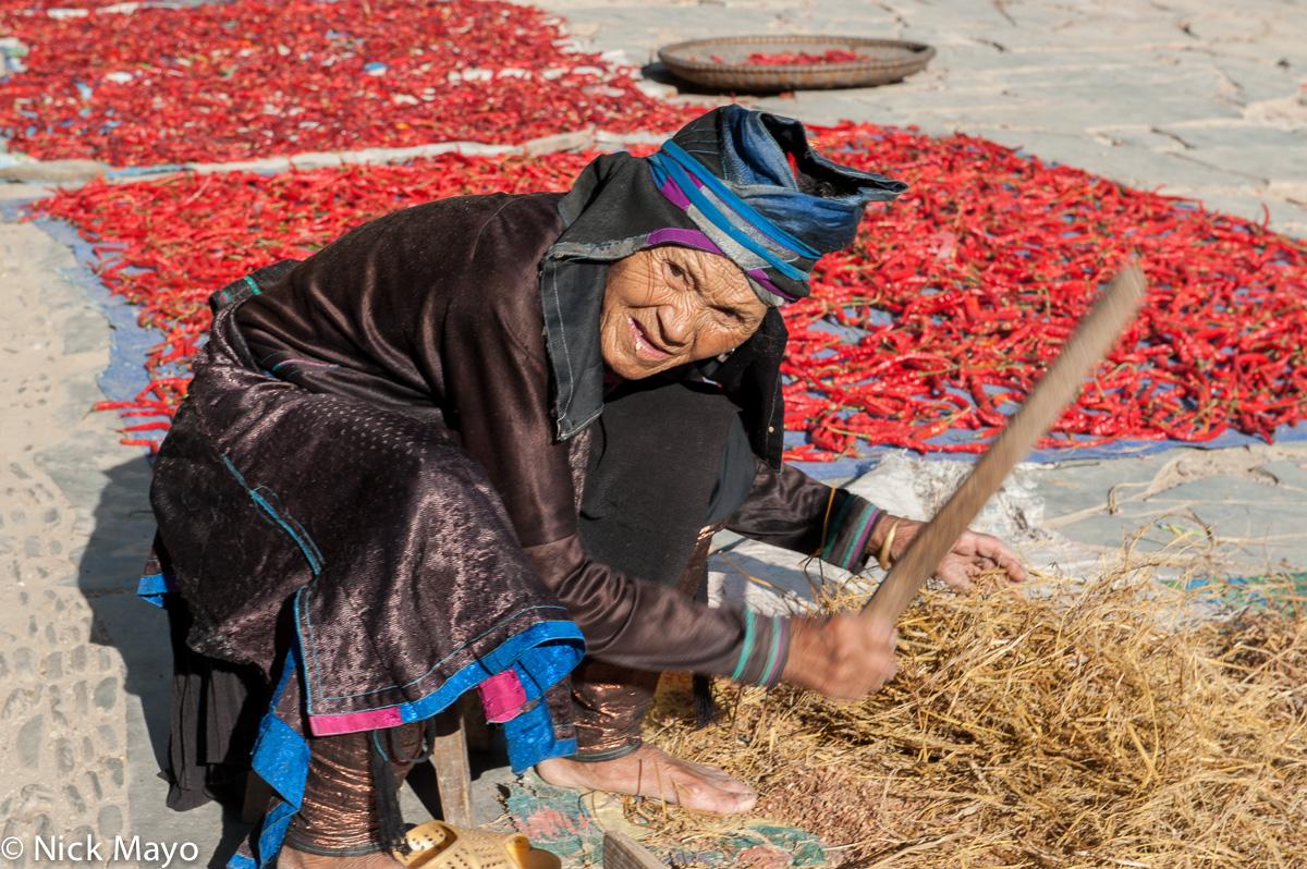 A Dong woman hand threshing paddy rice in Yintan.