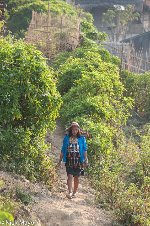 Hani,Laos,Phongsali, photo