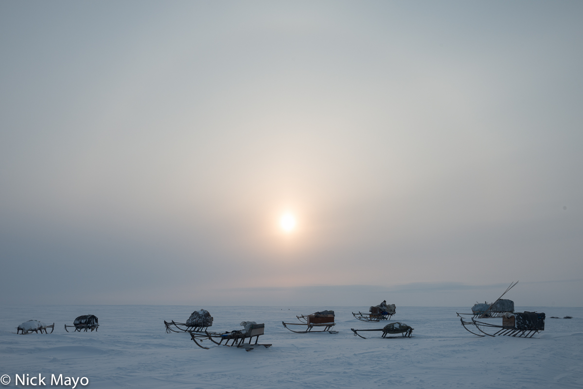 Sledges at a winter camp of the Nenets people on the Yamal peninsula in the Siberian Arctic.