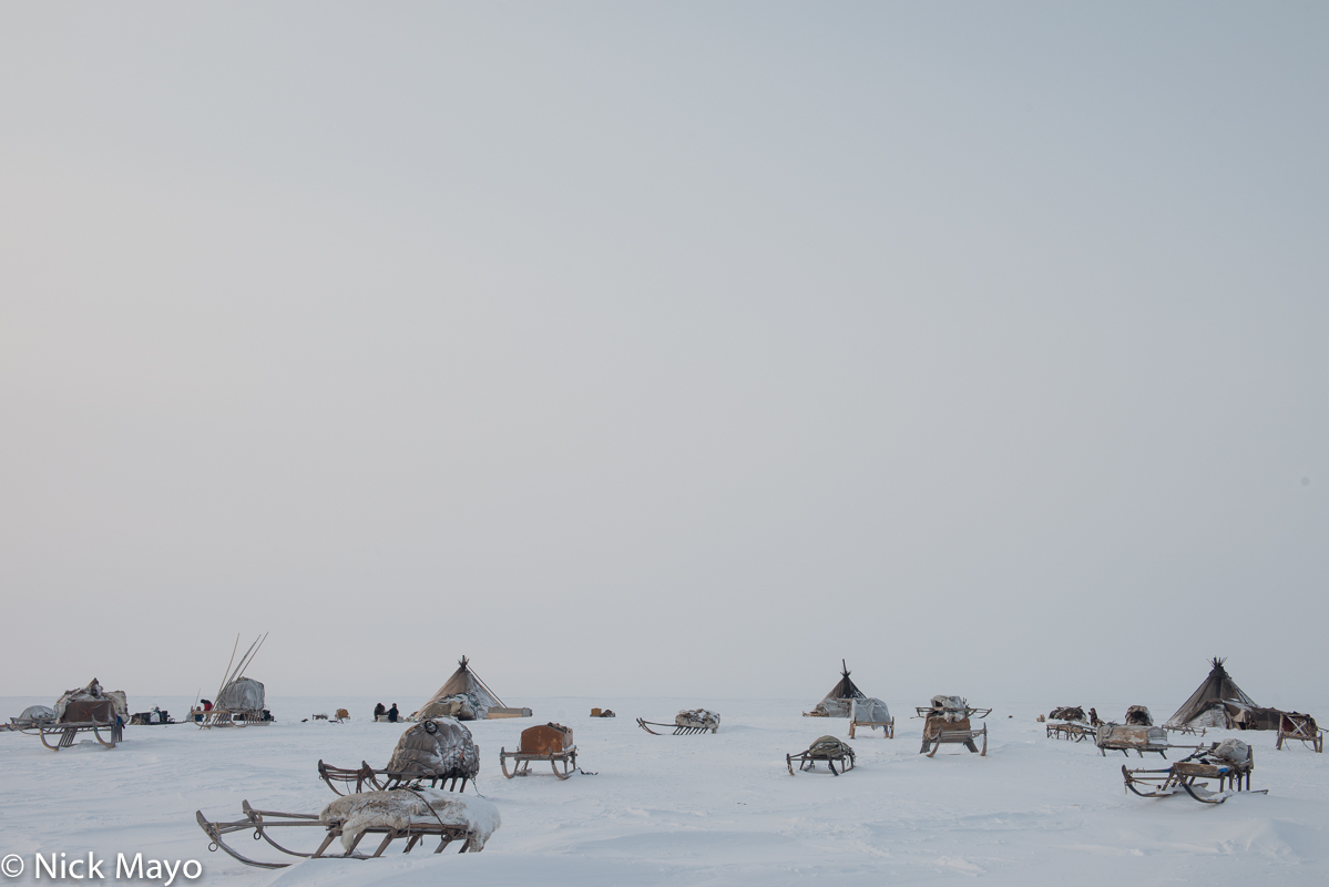 Russia,Sledge,Tent,Yamalo-Nenets, photo