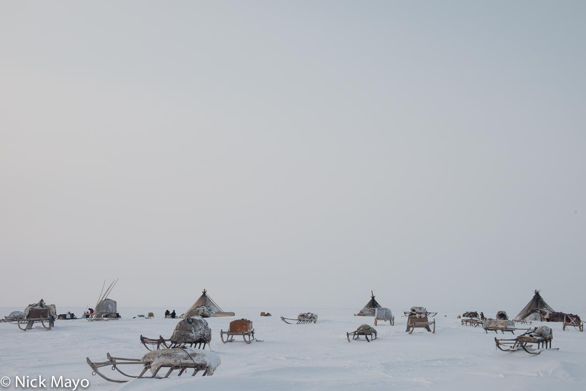 Russia,Sledge,Tent,Yamalo-Nenets, photo