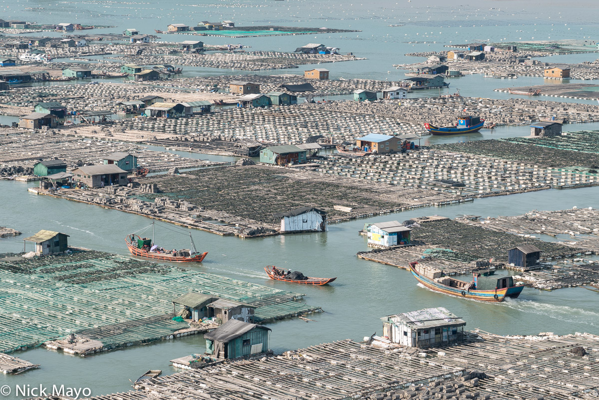 Boats passing through oyster beds being cultivated near Dong An, the bay of floating houses.