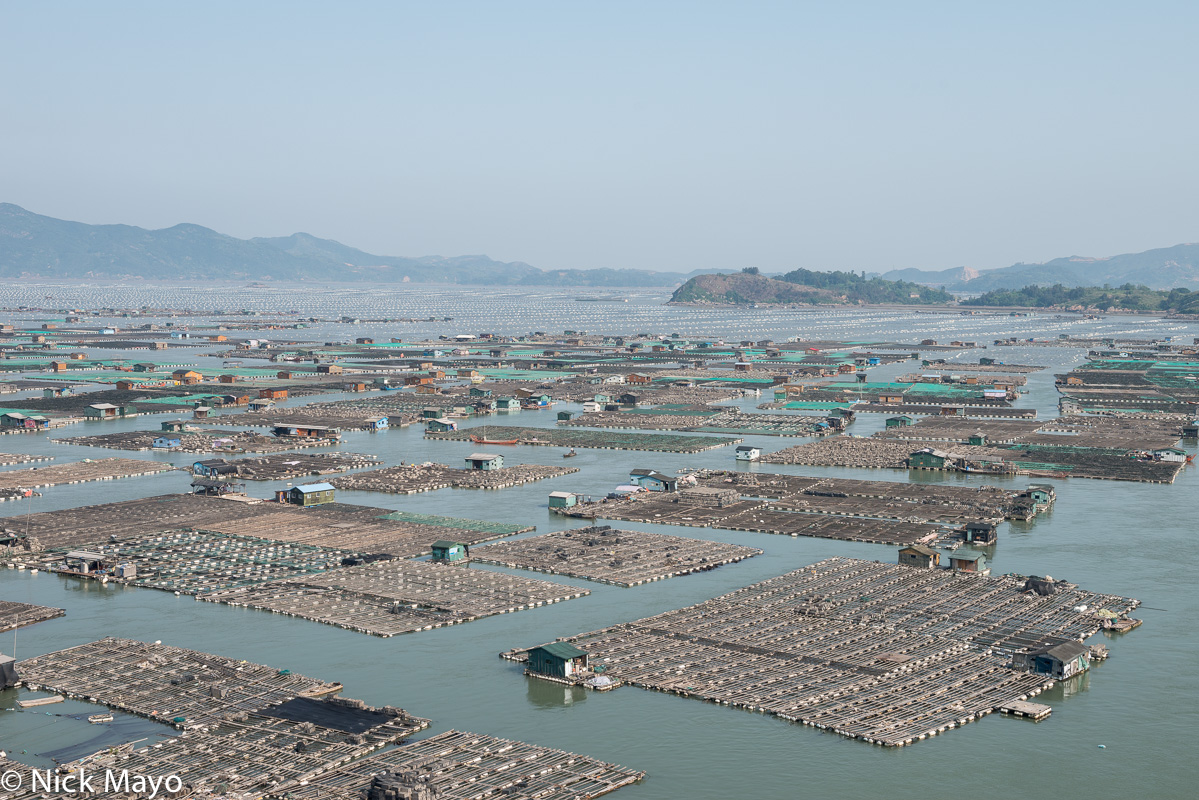Floating oyster beds and houses near Dong An.