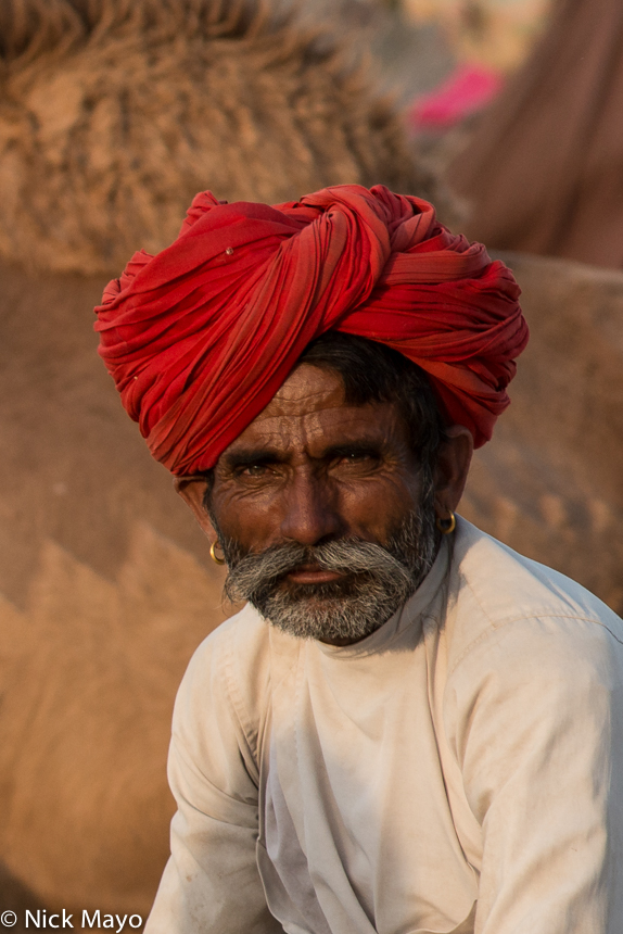 Festival,India,Rabari,Rajasthan,Turban, photo